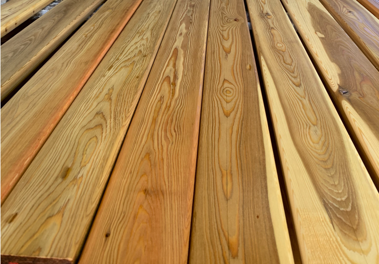 Siberian Larch PSE Sioo Clear
